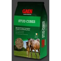 Gain Cubes granule extra pro březí kojící klisny 25kg