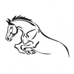 Samolepka koní různá