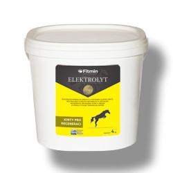 Fitmin horse ELEKTROLYT - 4 kg