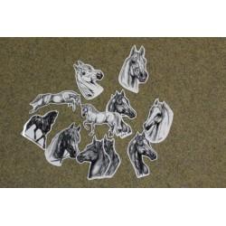 Samolepka koně kresba různých plemen a provedení