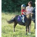 dětská a pony